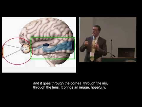 Part 2: Cortical/Cerebral Visual Impairment - What is it? with Darick Wright and Barry Kran
