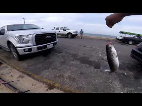 Rockport, TX Fishing For Red's And Speckled Trout