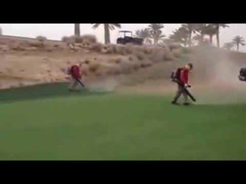 Cleaning Greens after a Sandstorm