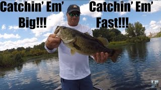 Fall Bass Fishing: Catching Big Bass Fast!!!
