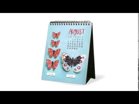 Beautiful Butterfly Illustrations in the 2017 Page-A-Month Desk Easel Calendar