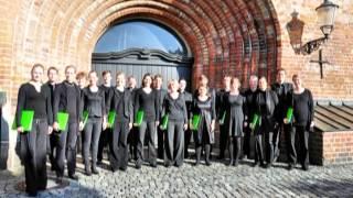 """Paul Hindemith: aus """"Six Chansons""""- no.3 Puisque tout passe // Phemios Kammerchor"""