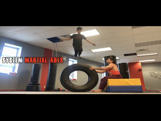 Motivation for Martial Arts Future Champions Training System Alex Lee