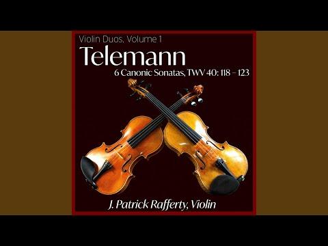 Sonata no. 1 in G Major, TWV 40: 118: III. Allegro