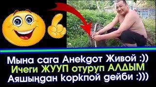 Кыргызча Живой Анекдот 😋 Ичеги ЖУУП отуруп АЛДЫМ 🤣  | Элдик Роликтер