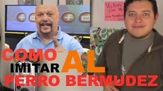 TUTORIAL DE VOZ PERRO BERMUDEZ