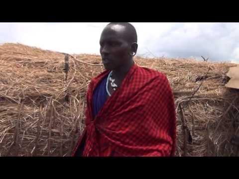 masai boma in ngorongoro, tanzania