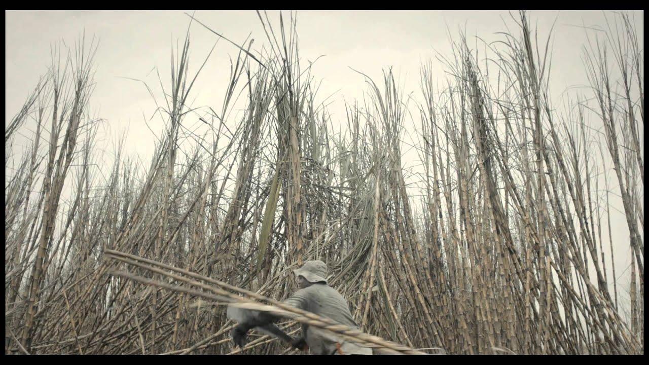 La Terre et l'Ombre, Le film complet sur Vimeo