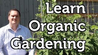 How Old Farm Knowledge can help you in your Backyard Organic Garden