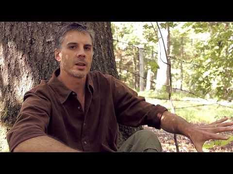 V&V Land Management Presents: How To Build A Road