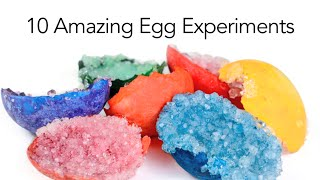 10 Amazing Egg Experiments - Steve Spangler Science
