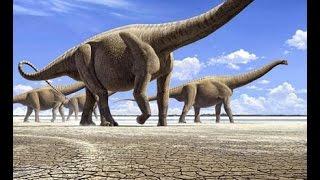 Самое большое существо, существовавшее когда-либо на Земле
