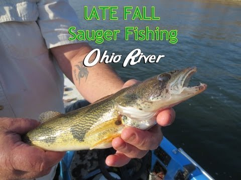 How to Catch Sauger on the Ohio River