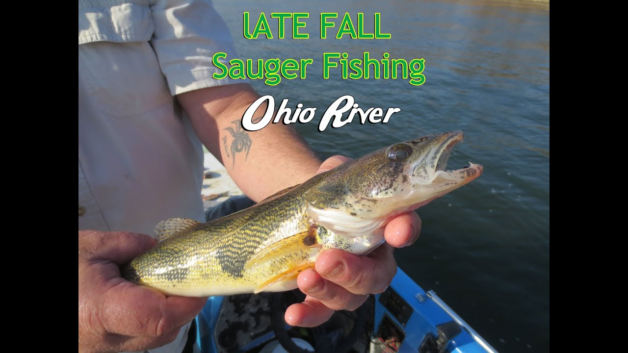How to catch sauger on the ohio river youtube for Best fishing in ohio