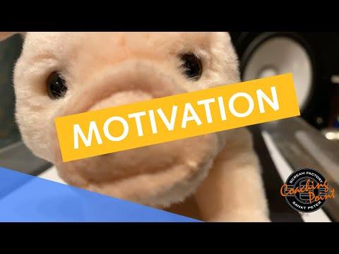"""Inspiriert und motiviert zu bleiben, ist in der momentanen Krise nicht leicht! George & Linda's ABC """"MOTIVATION"""" möchte deshalb ein kleiner positiver Ratgeber ..."""