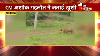 Mukundara Hills Tiger Reserve से खुशखबरी... बाघिन MT 2 के साथ दिखे 2 शावक