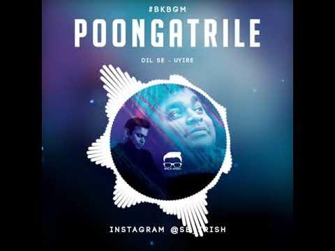 Poongatrile bgm
