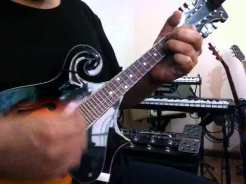 Paul Mccartney Dance Tonight Mandolin Cover Crisoliveira Youtube