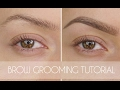 Eyebrow Grooming Tutorial In 6 Steps   Shonagh Scott   ShowMe MakeUp