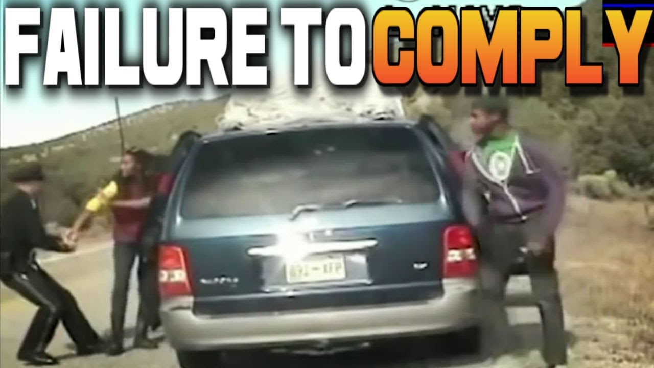 BLACK MOM & 6 ANGRY KIDS FIGHT COP TO AVOID ARREST GO ON SCARY HIGH SPEED CHASE