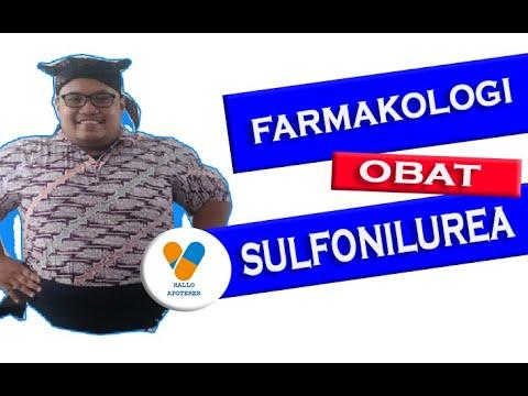 Cara Kerja Obat Anti Diabetes - Sulfonilurea - YouTube