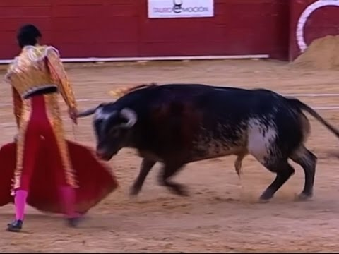 Raw: Spanish Matador Fatally Gored By Bull