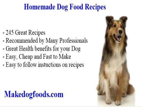 Diabetic dog food recipes youtube diabetic dog food recipes forumfinder Image collections