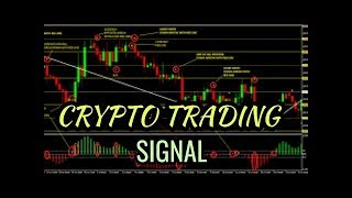 crypto trading best signal always working 100% REAL BUSINESS