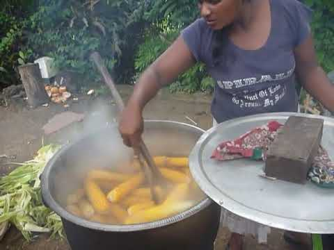 Image result for Corn Sri Lanka