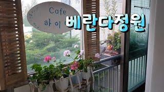 하이디의하루(Vlog)/베란다정원/야생새 직박구리/직박…