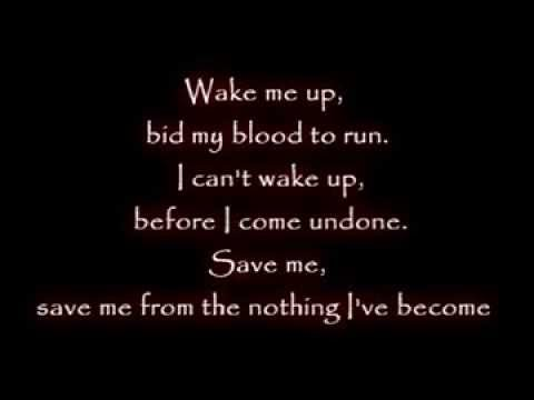 Linkin Park & Evanescence  Wake Me Up Inside  Music Lyrics HD