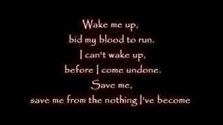 Linkin Park & Evanescence - Wake Me Up Inside [ Music Lyrics HD ]