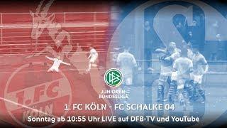 Programmhinweis: 1. FC Köln vs. Schalke 04