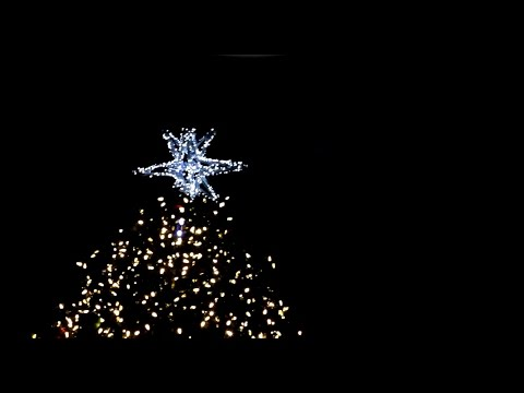 Faneuil Hall Christmas Tree Lighting 2016