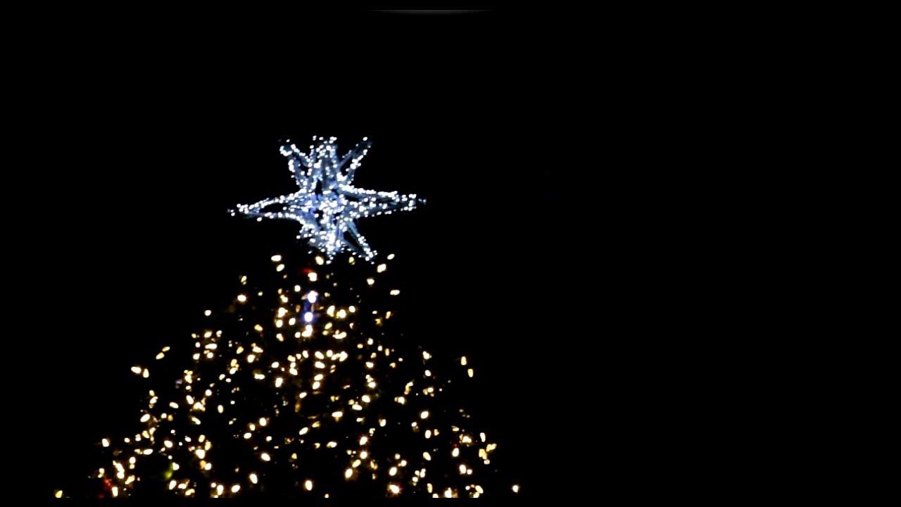 Faneuil Hall Christmas Tree Lighting 2016