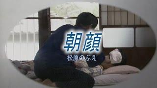 朝顔 (カラオケ) 松原のぶえ