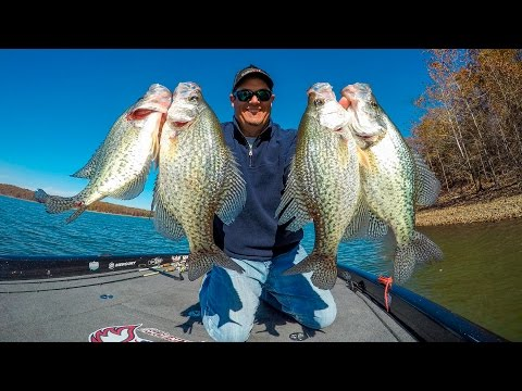 Finding Good Crappie Fishing Spots