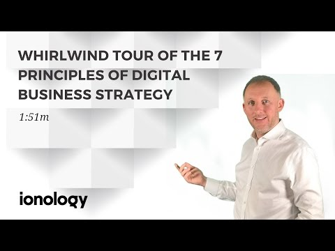 Whirlwind Tour of the 7 Principles of Digital Business Strategy