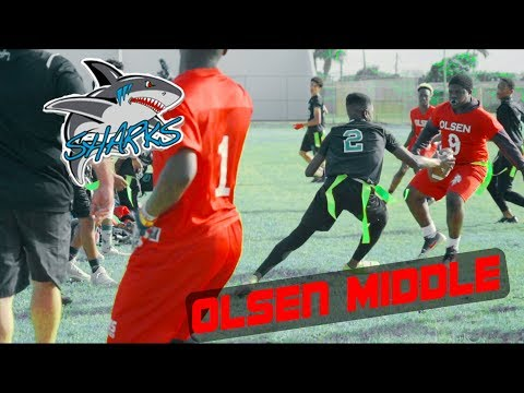 WEBS CAME IN CLUTCH!! || New river middle school VS. Olsen middle