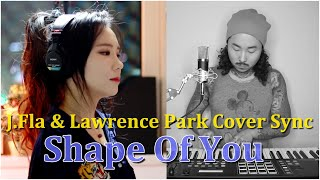 Ed Sheeran - Shape Of You (J.Fla & Lawrence Park Cover Sync)