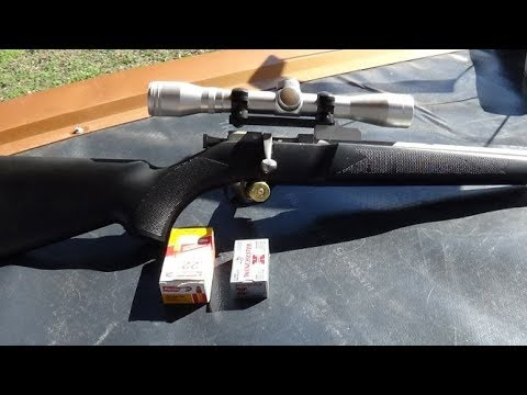 22lr VS 22 Short With A Rifle