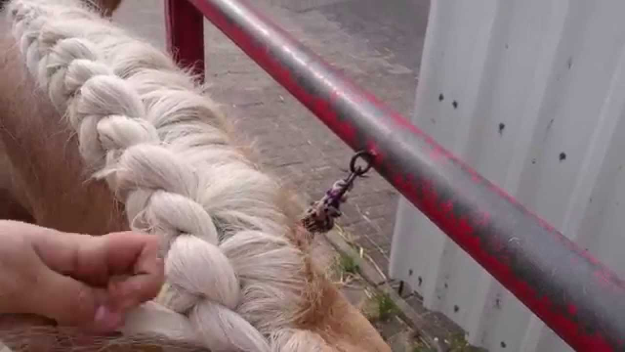 Tutorial Mähne Einflechten Französicher Zopf Bauernzopf Youtube
