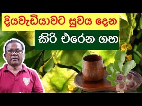 ගහෙන් හදපු බදුනක වතුර බිව්වත් සුව වෙන ඔසුව | Gammalu | Ceylon Agri | Episode 177