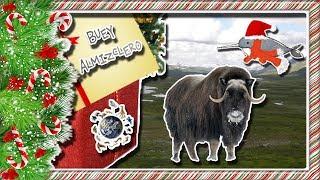 Buey Almizclero |El vikingo con abrigo espeso| (Animales del Mundo) |Mes navideño|