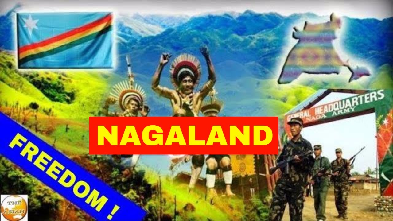 Image result for nagaland freedom