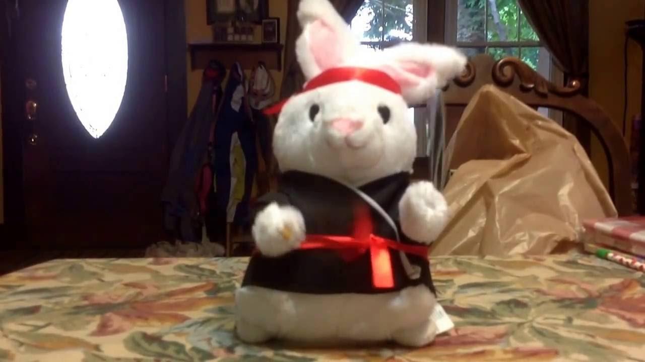 778e86e27 Gemmy Kung fu Rabbit-Kung fu Fighting - YouTube