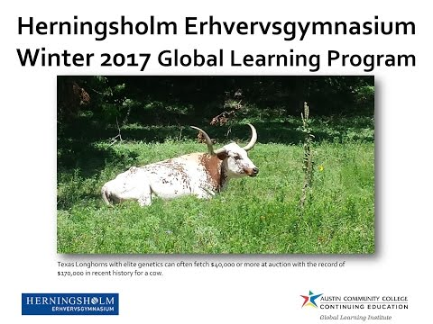 Winter 2017 Winter Global Learning Program Booklet - Herningsholm Erhvervsgymnasium, HHX