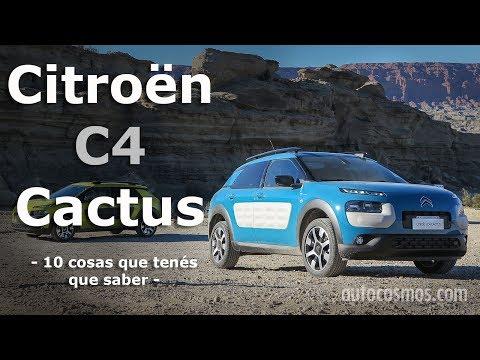 Citroën C4 Cactus: 10 cosas que tenés que saber | Autocosmos