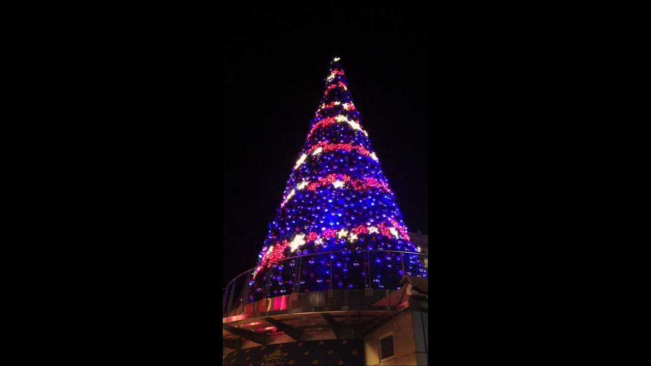 8th Annual National Harbor Christmas Tree Lighting & 8th Annual National Harbor Christmas Tree Lighting - YouTube