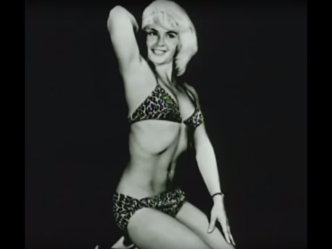Icons of Wrestling   Penny Banner